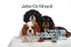 John-14-vs-6
