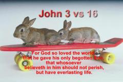 John-3-vs-16-2